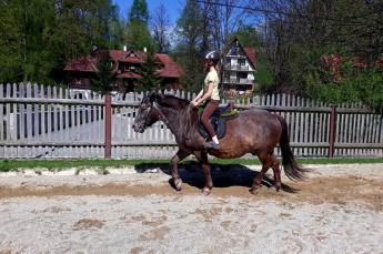 Szczawnica Atrakcja Jazda konna Stadnina koni Rajd